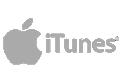 itunes logo website